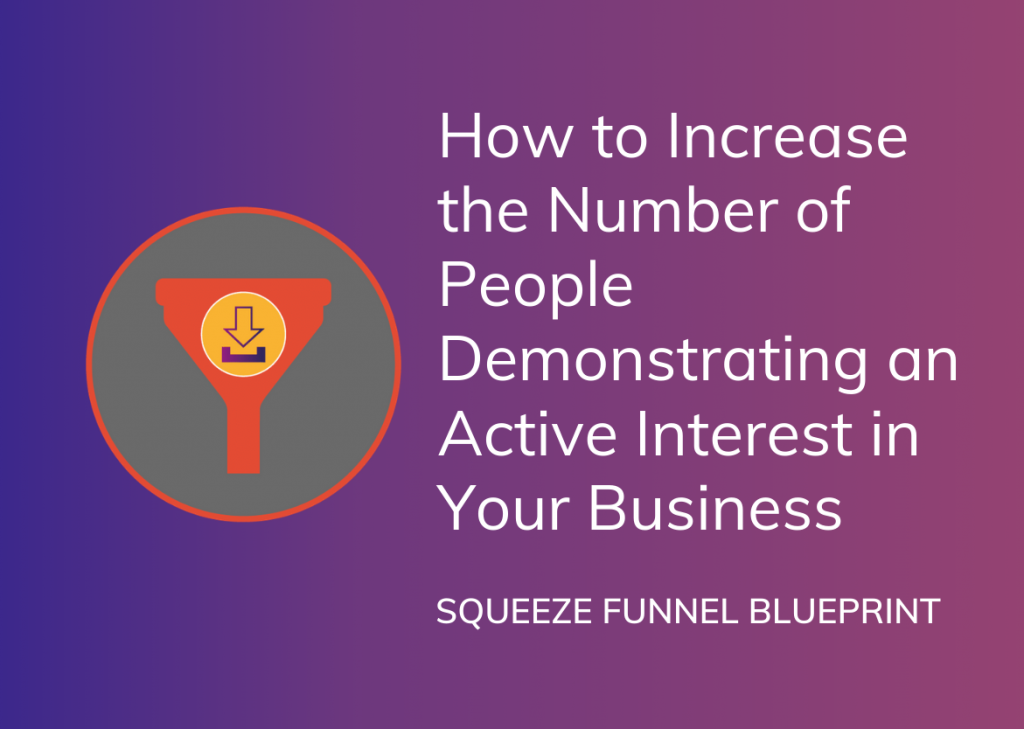 Squeeze Funnel Blueprint